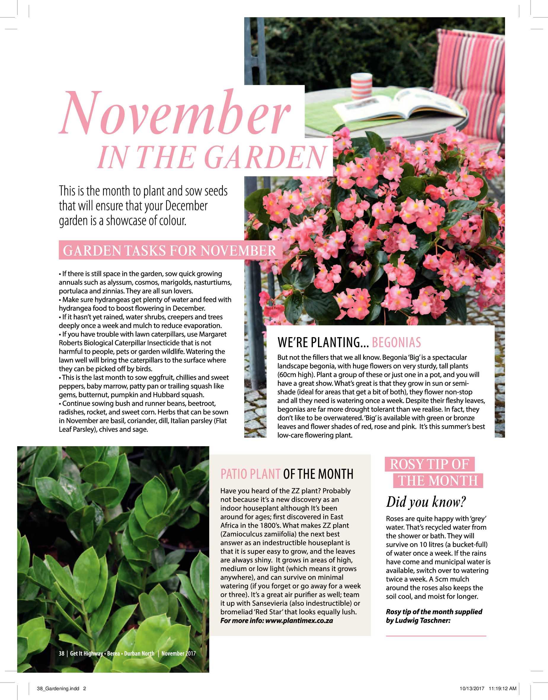 get-magazine-durban-november-2017-epapers-page-40